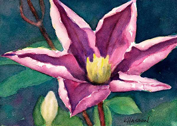 how to paint a clematis with watercolor